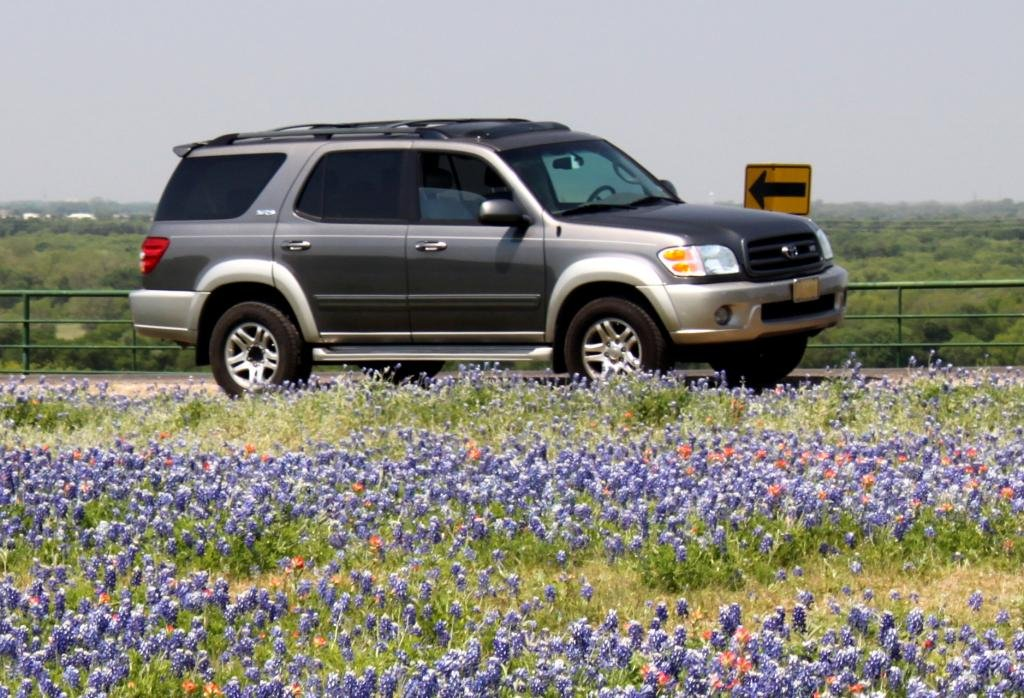 Showcase cover image for 2004 Sequoia