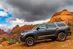Schnebly Hill Sequoia.jpg